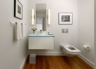 wall hung toilet design