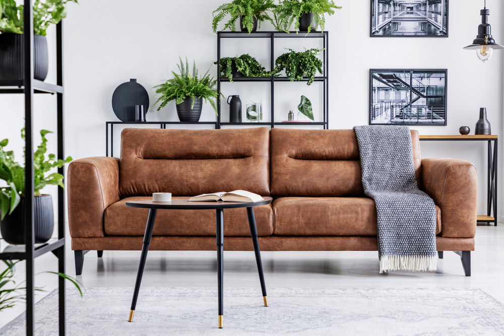 maintain your leather furniture