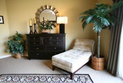 interior design using indoor plants