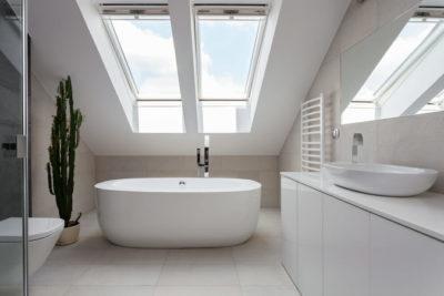 skylight window design idea