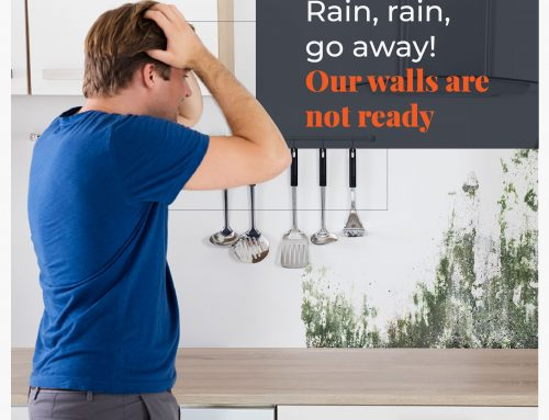 Expert guide getting your walls rain-ready this monsoon